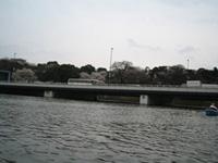 f0006509_201165.jpg
