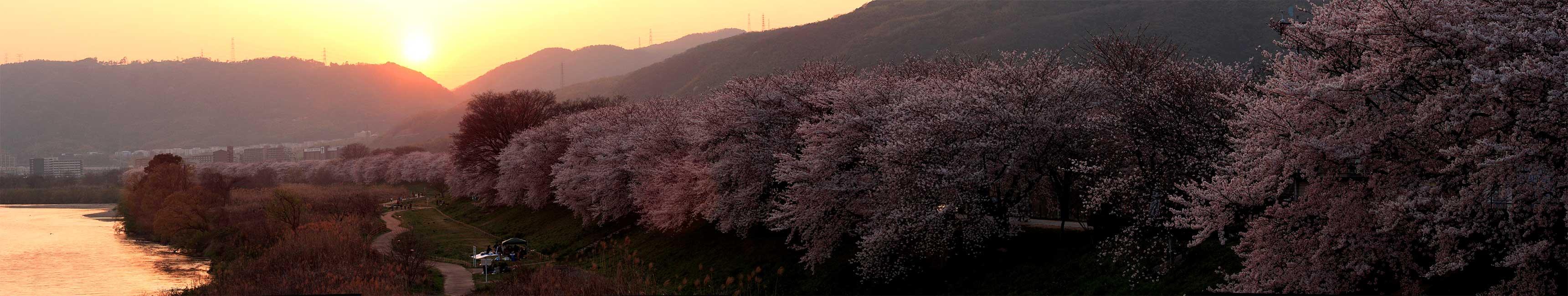 京都府庁特別拝観 2_f0021869_2145031.jpg