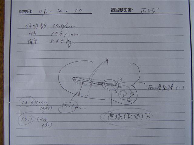 a0048355_17483094.jpg
