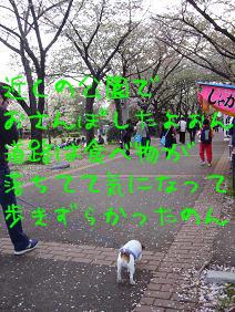 f0020777_0105431.jpg