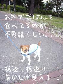 f0020777_0151046.jpg