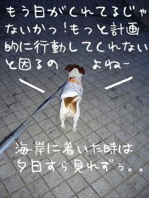 f0020777_0502381.jpg