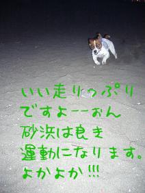 f0020777_16786.jpg