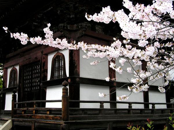 本法寺と裏千家_e0048413_2235088.jpg