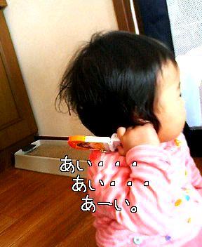 b0047734_973559.jpg