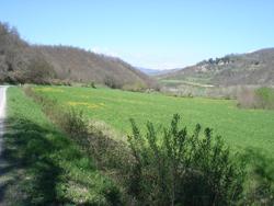 春のトスカーナ_f0106597_423512.jpg