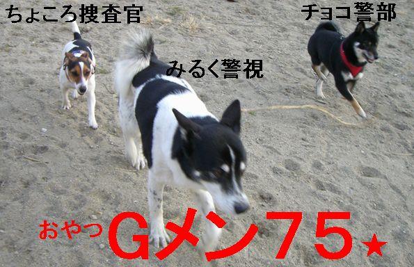 f0053952_9281359.jpg