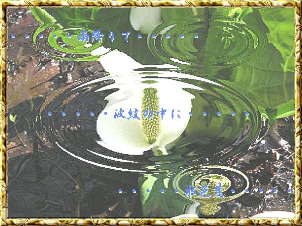 c0018470_8524325.jpg