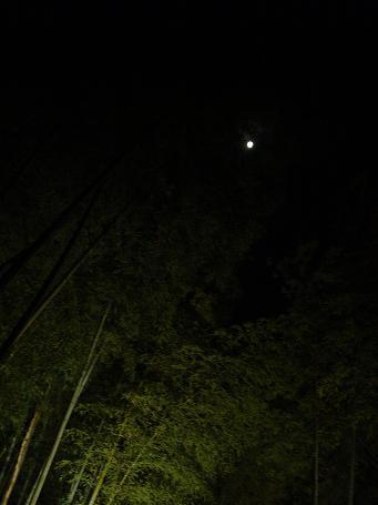 day / night_c0069389_1311848.jpg