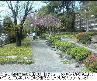 b0059410_2010384.jpg