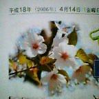 b0044726_7512926.jpg