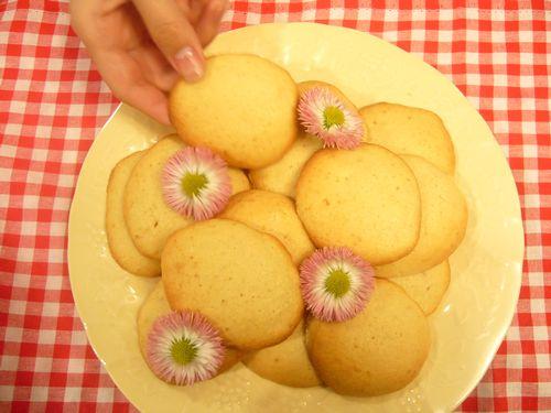メープルシロップクッキーと聖土曜日の朝。。。 *。:☆.。† _a0053662_8191098.jpg
