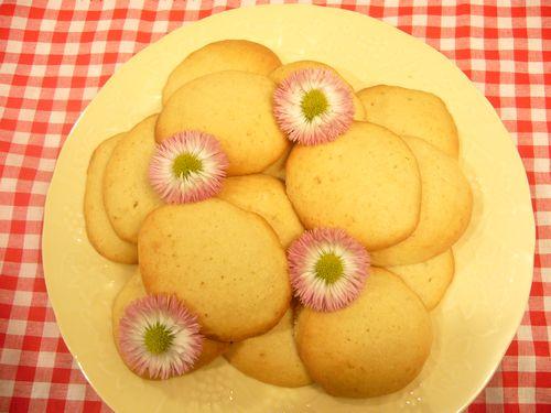 メープルシロップクッキーと聖土曜日の朝。。。 *。:☆.。† _a0053662_8192555.jpg