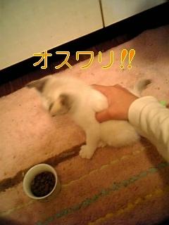 f0082938_13371726.jpg