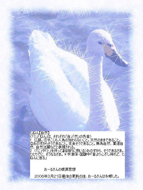 f0081226_6175268.jpg