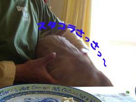 d0043478_23514061.jpg