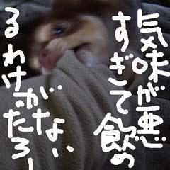 c0036617_187860.jpg