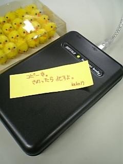 d0042851_2175848.jpg