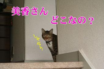 f0101903_15315871.jpg