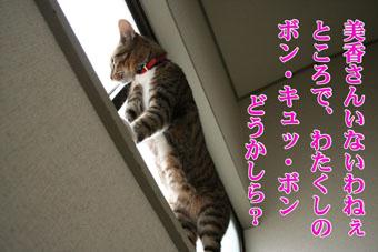 f0101903_1532495.jpg