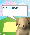 c0037212_20534664.jpg