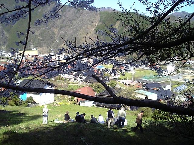 春爛漫の候_c0060919_14471039.jpg
