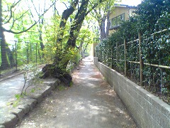 c0031126_318126.jpg