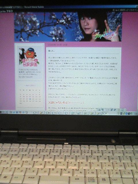 パソコン、クラーッシュ!_e0013944_3444930.jpg