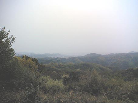 桜吹雪と新緑・六国見山・4月19日_c0014967_1272227.jpg