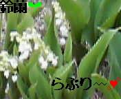 e0017290_17145237.jpg
