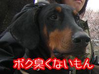 f0025769_18453610.jpg