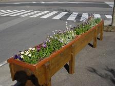 牧場通りが花いっぱい_f0064906_9252777.jpg