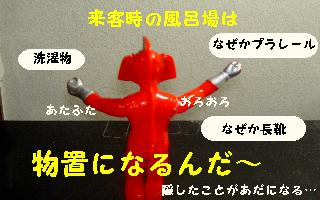 a0048531_16567100.jpg