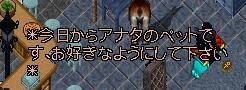 f0088436_1335130.jpg