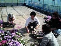 植栽イベント・イヴ_e0031964_2352640.jpg