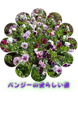 b0019313_18363138.jpg