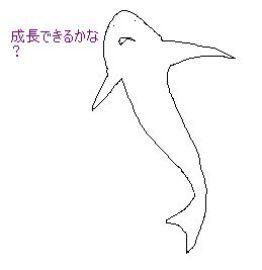 b0073617_0312461.jpg