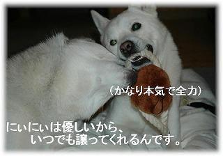 a0047325_0152976.jpg