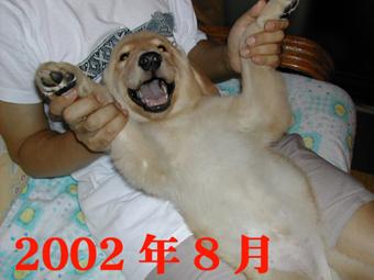 e0072606_22343430.jpg