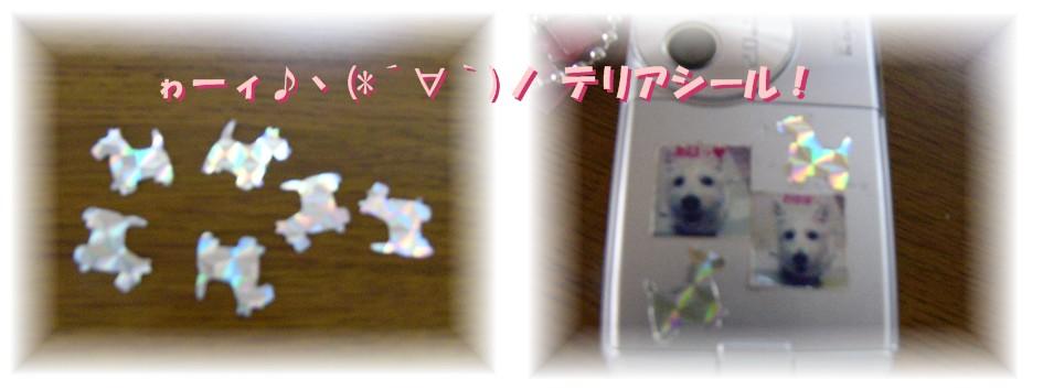f0039907_2201039.jpg