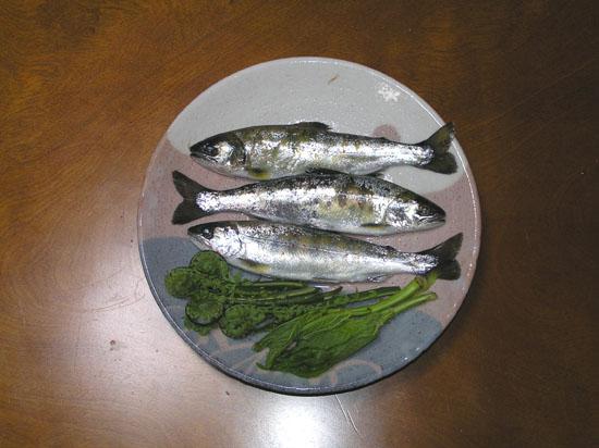 渓流釣りと山菜_e0048413_16354870.jpg
