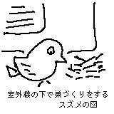 b0058868_17251252.jpg