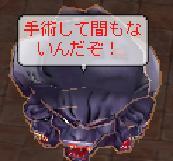 b0027699_1746459.jpg