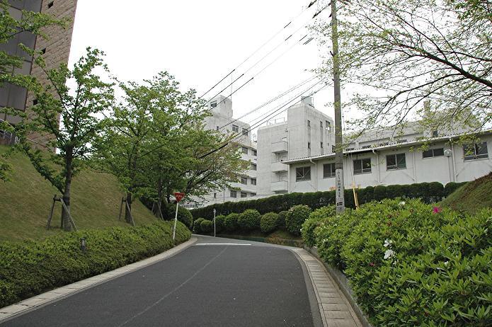 日本経済大学・保育短大・福祉大学_a0042310_19581376.jpg