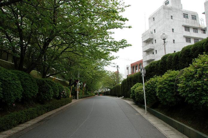 日本経済大学・保育短大・福祉大学_a0042310_19584054.jpg