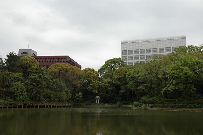 日本経済大学・保育短大・福祉大学_a0042310_20101629.jpg