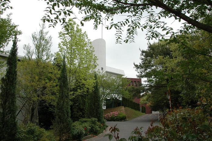 日本経済大学・保育短大・福祉大学_a0042310_20105797.jpg