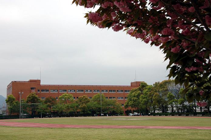 日本経済大学・保育短大・福祉大学_a0042310_20151628.jpg