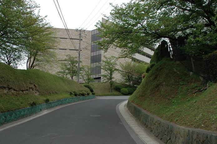 日本経済大学・保育短大・福祉大学_a0042310_2017264.jpg