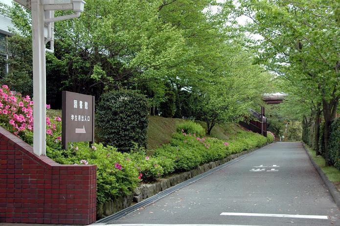 日本経済大学・保育短大・福祉大学_a0042310_2052395.jpg